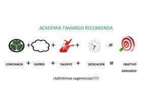 academia tamargo recomienda en jpg