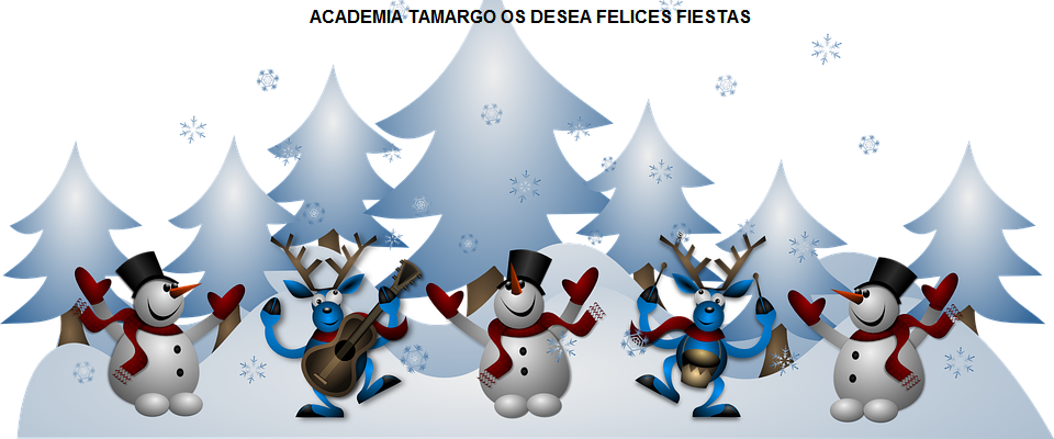 cropped-snowmen-160883_960_720.png