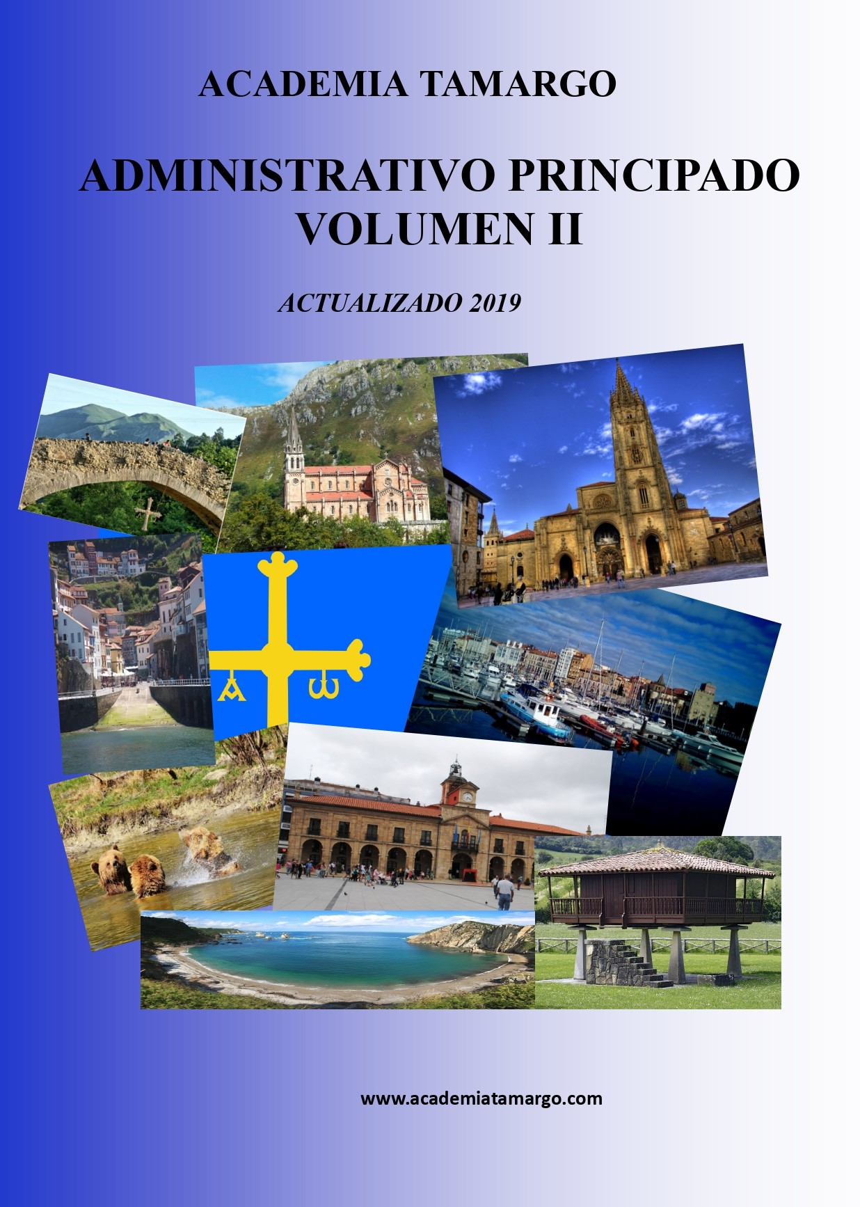 portada, contraportada y lomo de especifico del ADVO ppdo. VOL II_page-0001