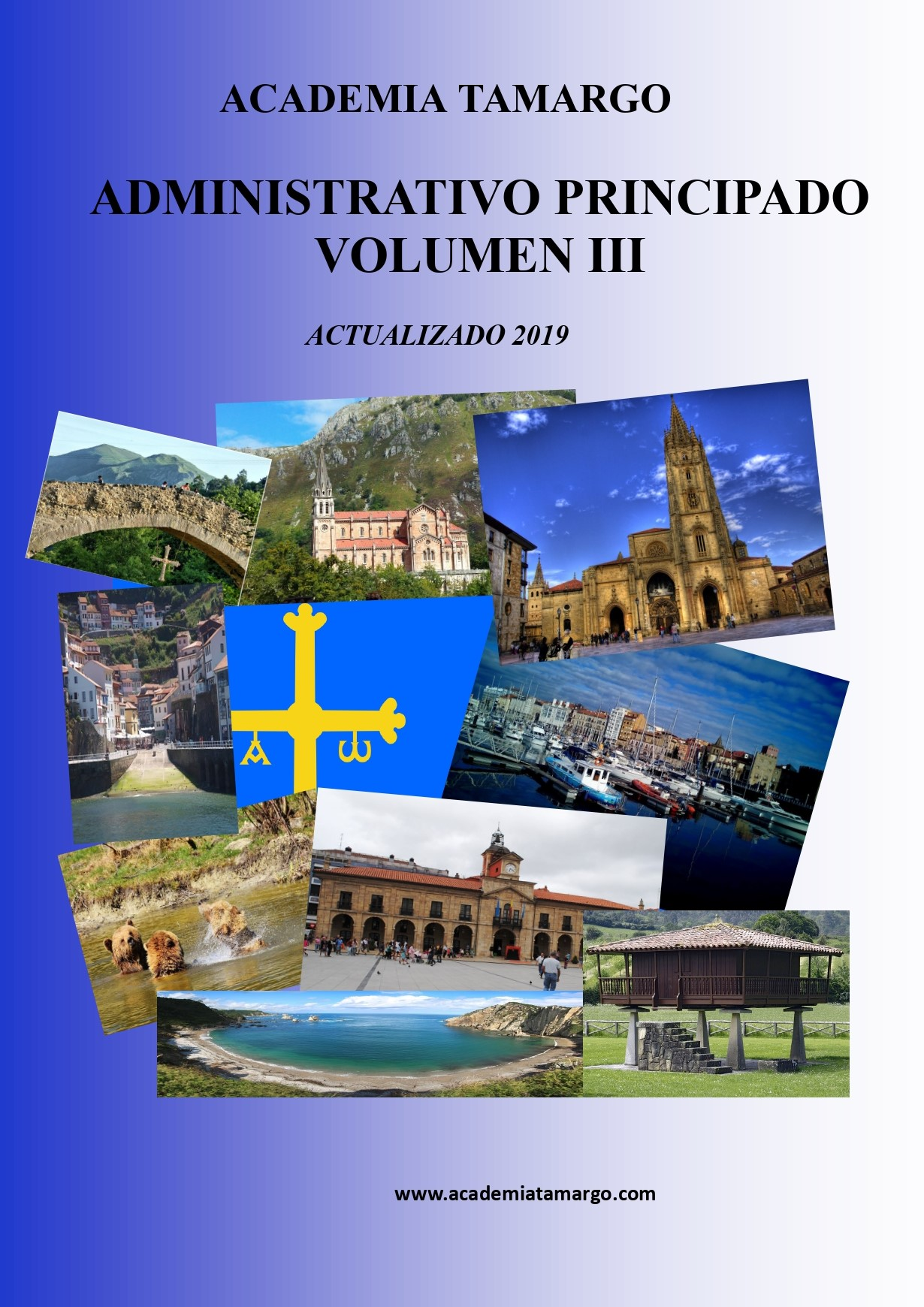 portada, contraportada y lomo de especifico del ADVO ppdo. VOL III_page-0001
